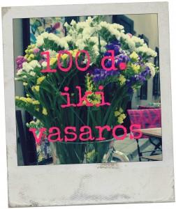 vasara 100